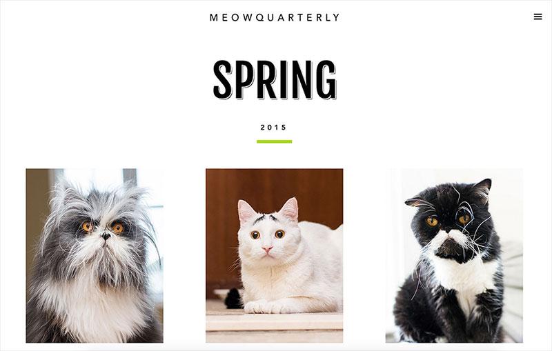 Meow Quarterly