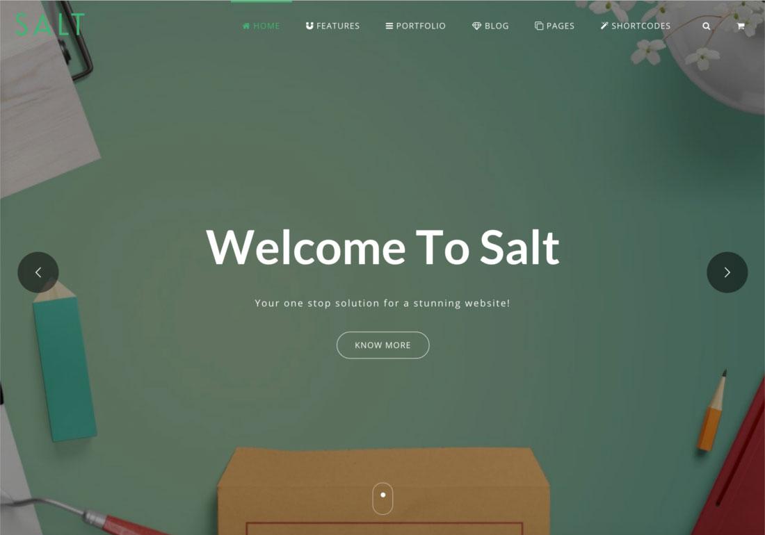 Salt - Multi-purpose Web Template
