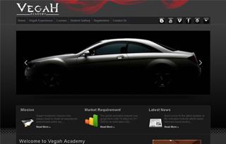 VegaH Academy