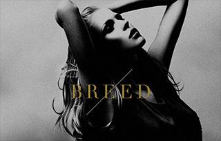 BREED fashion photography workshops