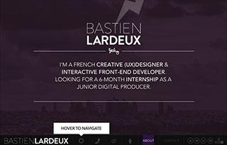 Bastien Lardeux's Portfolio