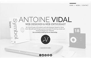 Antoine Vidal's Portfolio