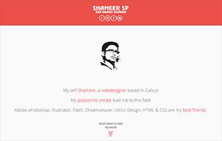 shameer webdesigner