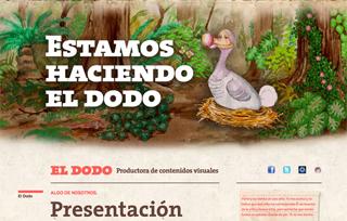 El Dodo · Productora de contenidos visuales
