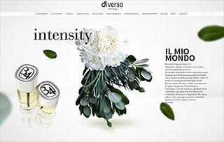 Diverso Event Design
