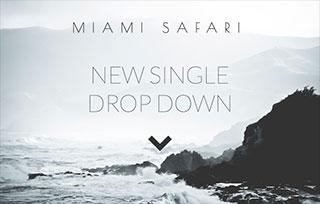 Miami Safari