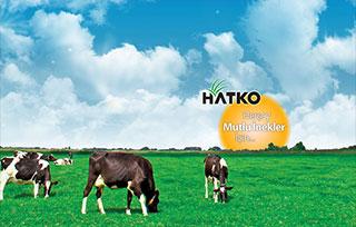 Hatko Kaucuk