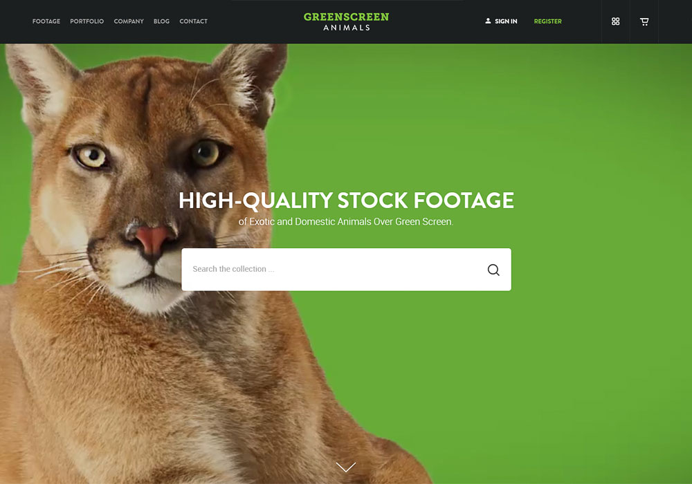GreenScreen Animals