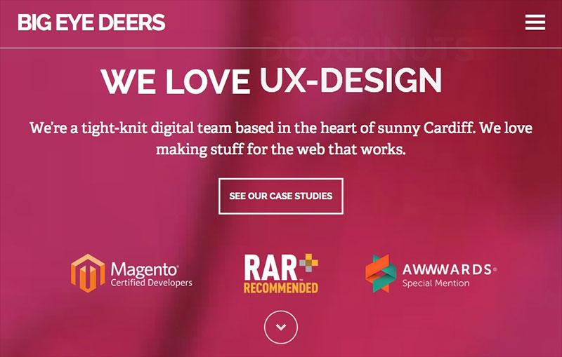 Big Eye Deers Web Design Company