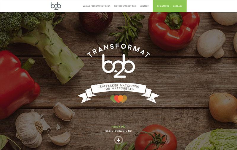 Transformat B2B