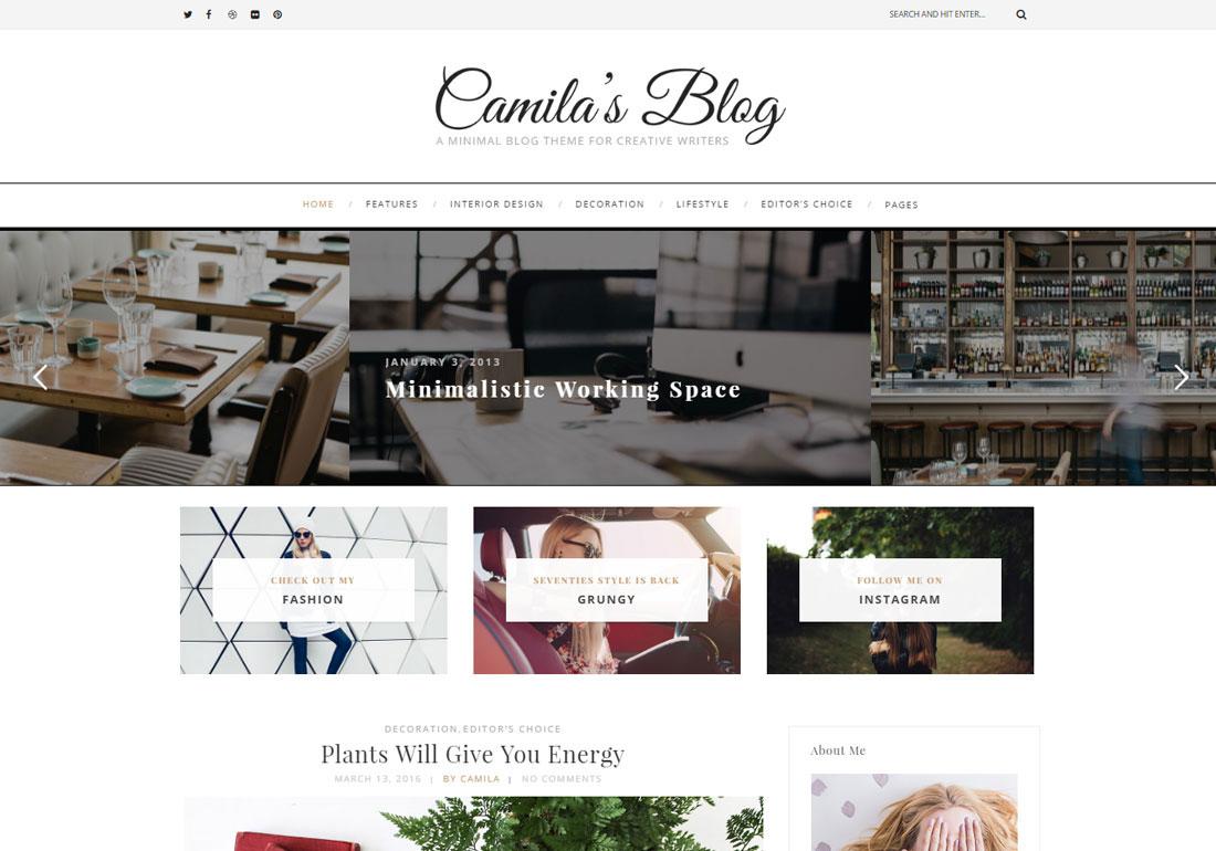 Camila - WordPress Blog Theme