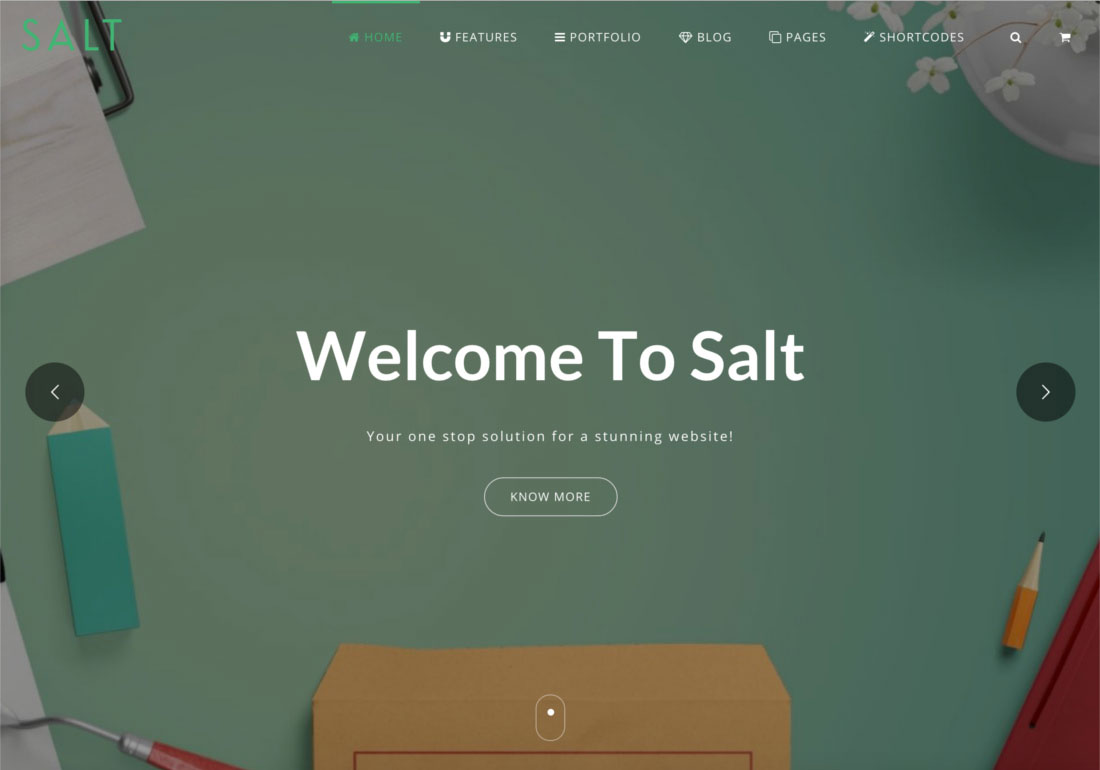 Salt - Multi-purpose Web Template