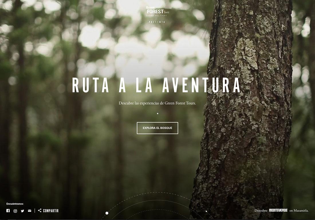 Green Forest Tours: Ruta a la Aventura