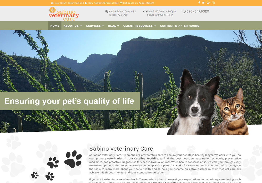 Sabino Veterinary Care