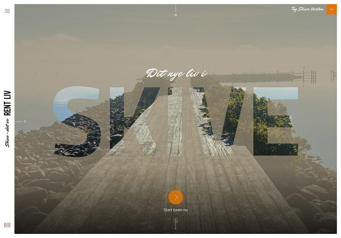 SKIVE - the PURE LIFE