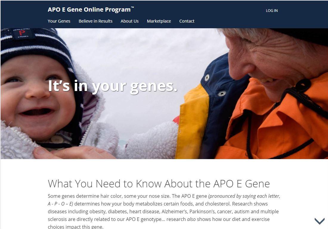 The APO E Gene Program