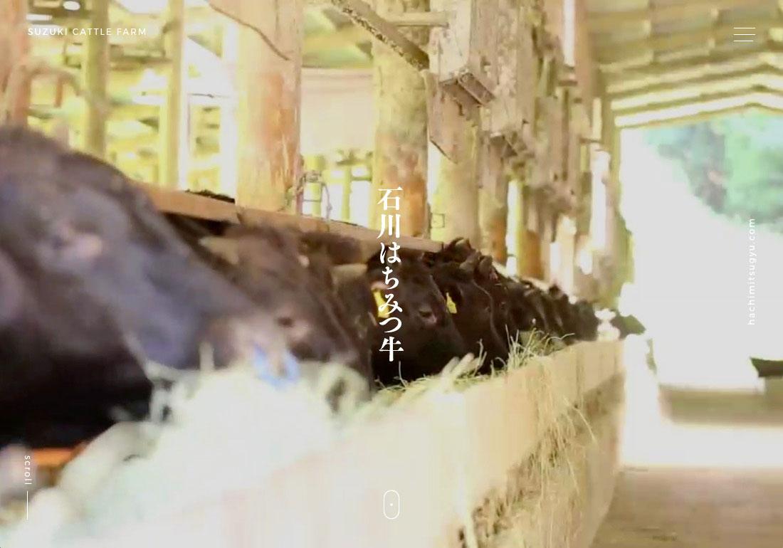 ISHIKAWA HONEY BEEF