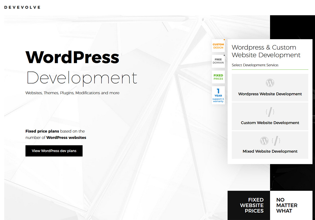 Devevolve - WordPress Dev Plans