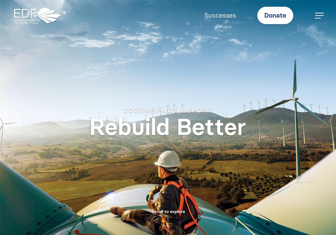 EDF 2020 Impact Report
