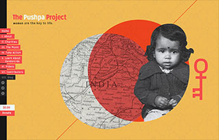 The Pushpa Project