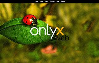onlyx web+design