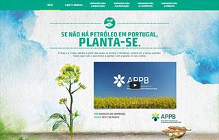 Se não há petróleo em Portugal,