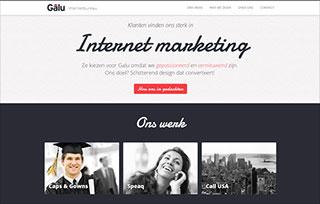 Galu Internetbureau Webdesign Rotte