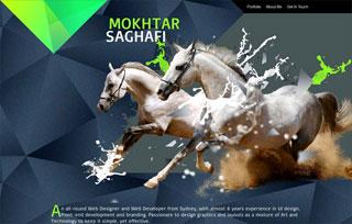 Mokhtar SAGHAFI Portfolio