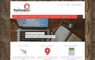 VetCoders