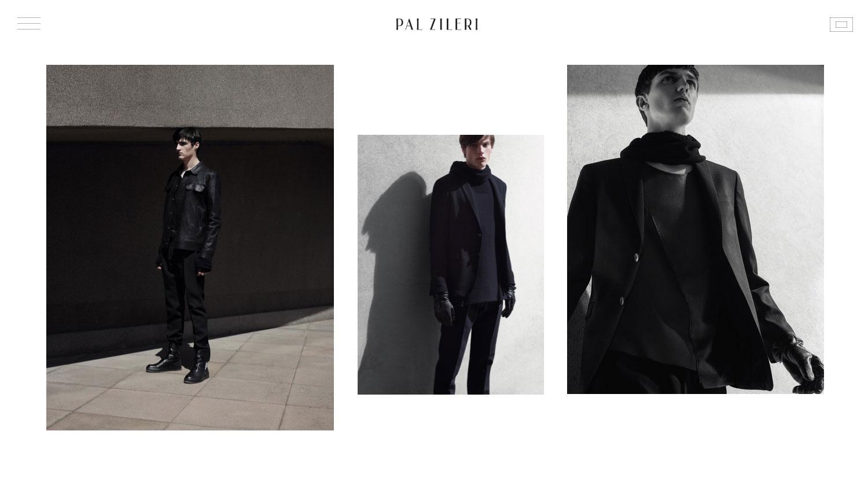 PAL ZILERI - Website of the Day