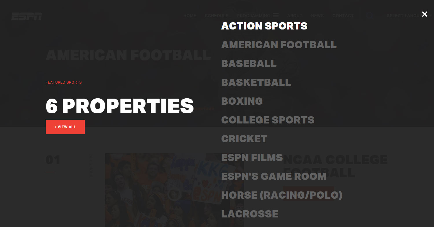 ESPN Sports Programming - Website of the Day