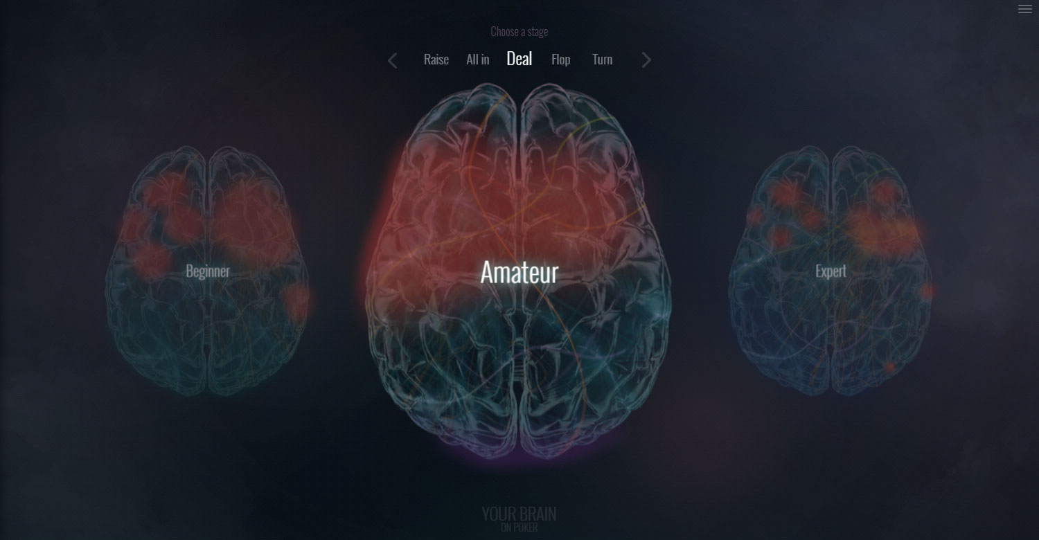 Your Brain On Poker - Website of the Day