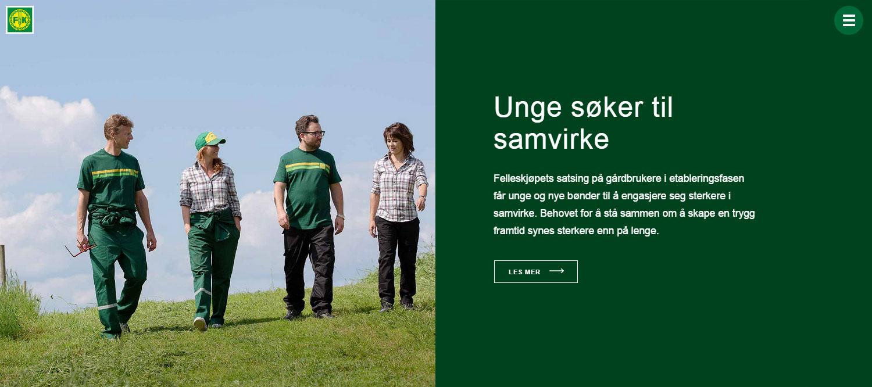 Annual report for Felleskjøpet - Website of the Day