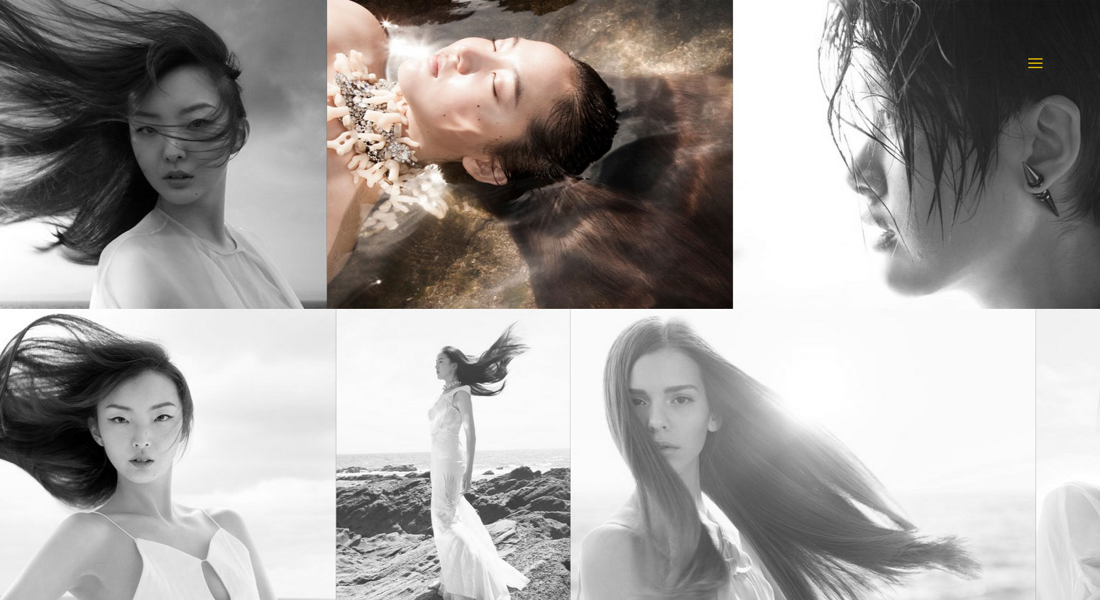 Hair Expert Guild - Website of the Day
