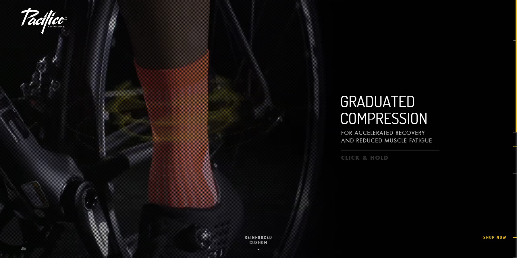 Performance Socks - Pacific&Co - Website of the Day