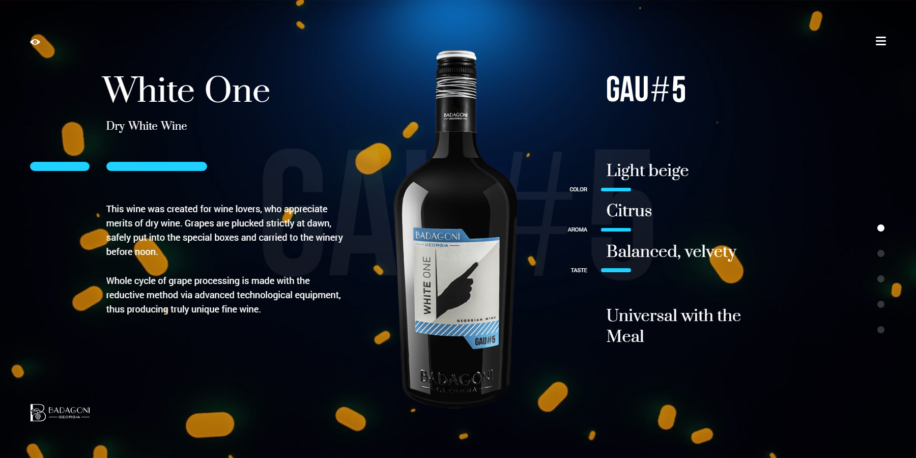 GAU#5 - Website of the Day