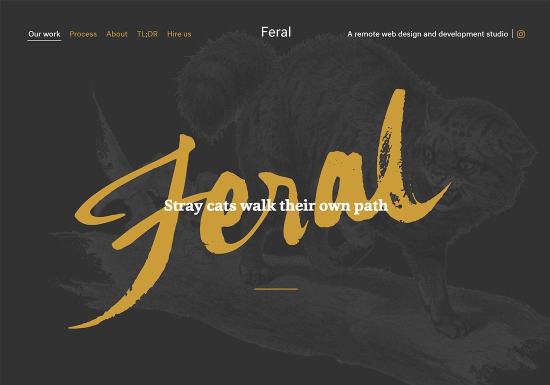 Feral Studio