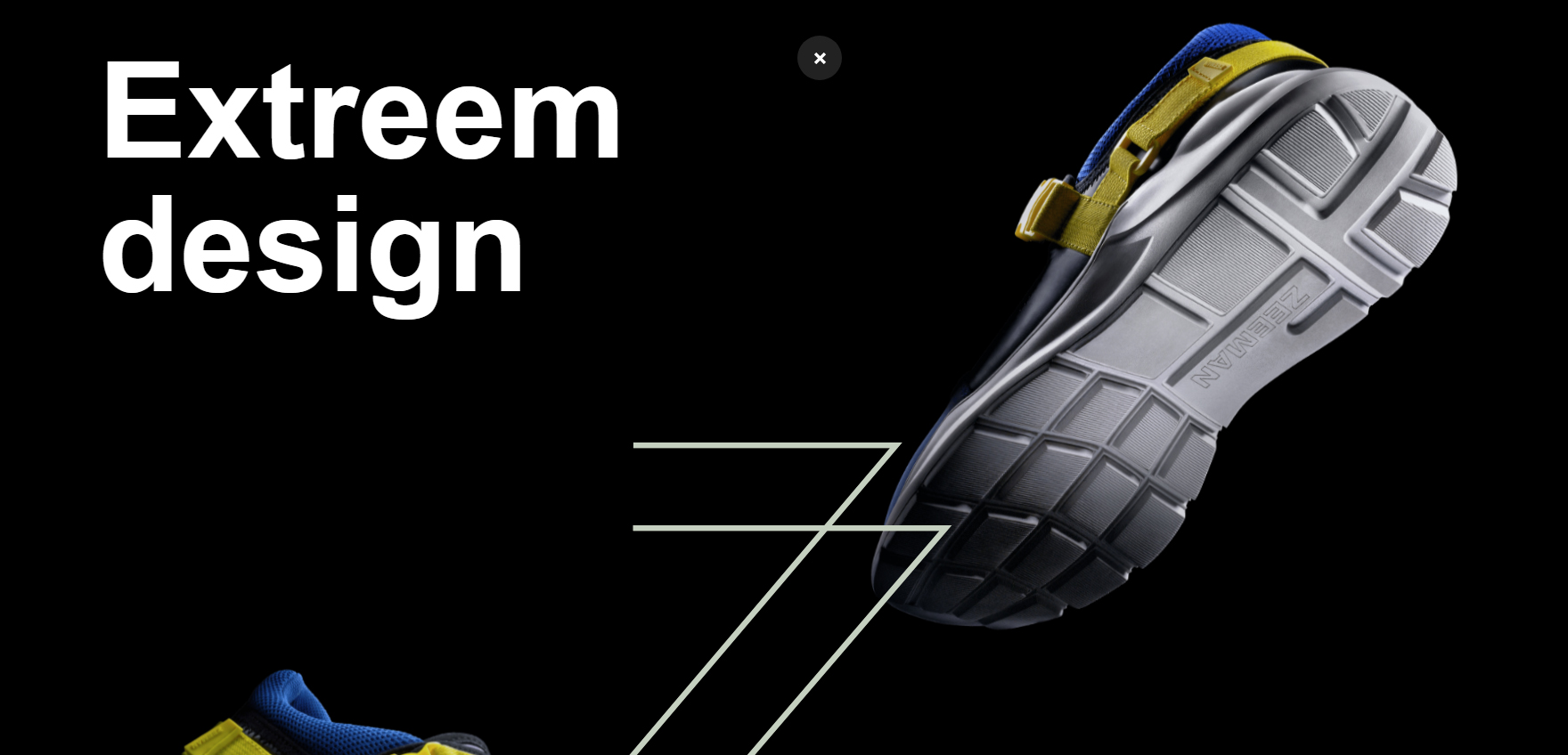 Zeeman - Website of the Day