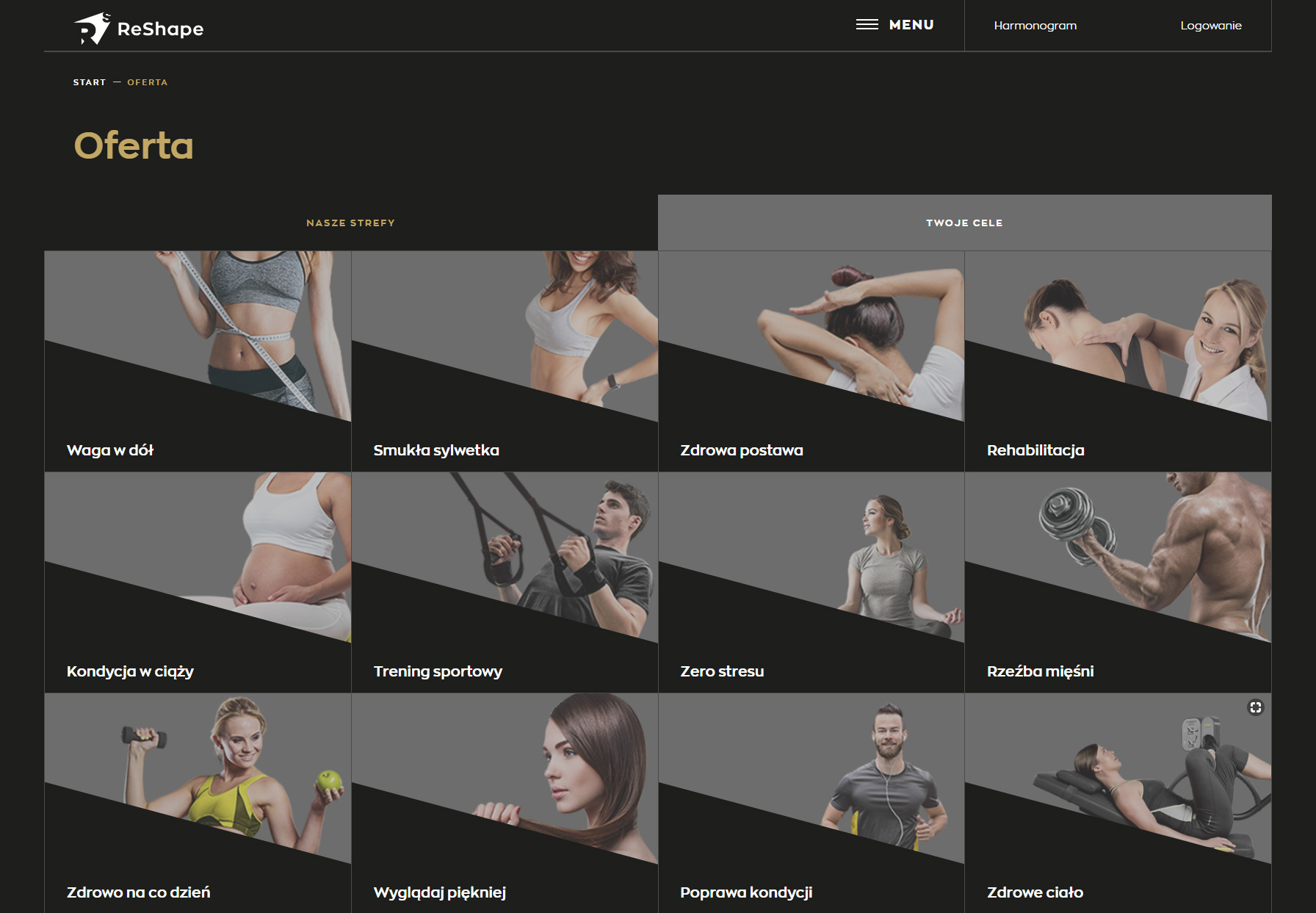 ReShape - Website of the Day