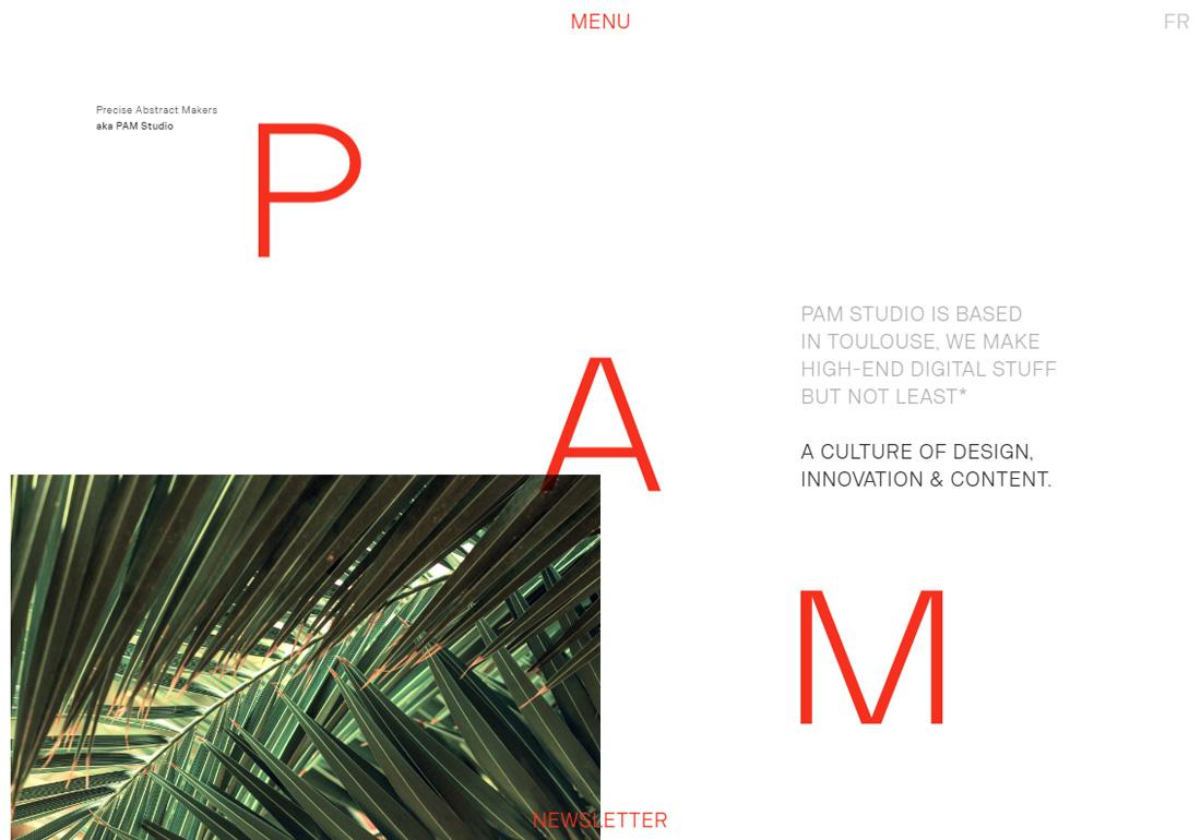 PAM Studio
