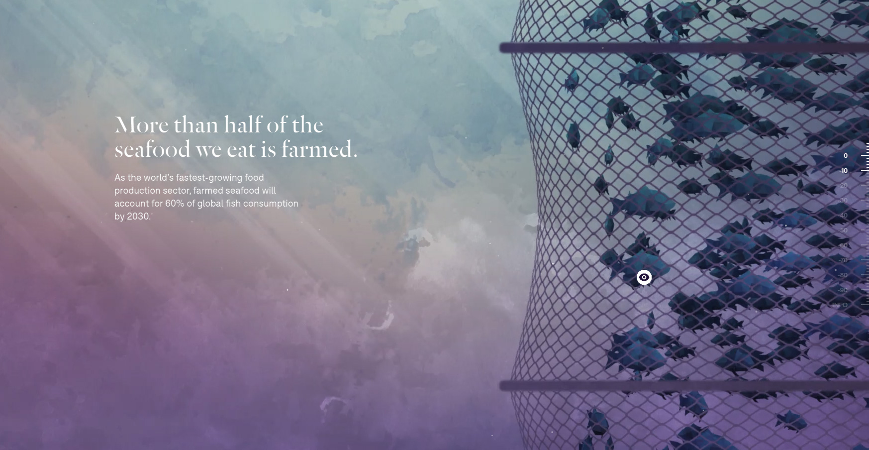 Fishing the Feed - Website of the Day