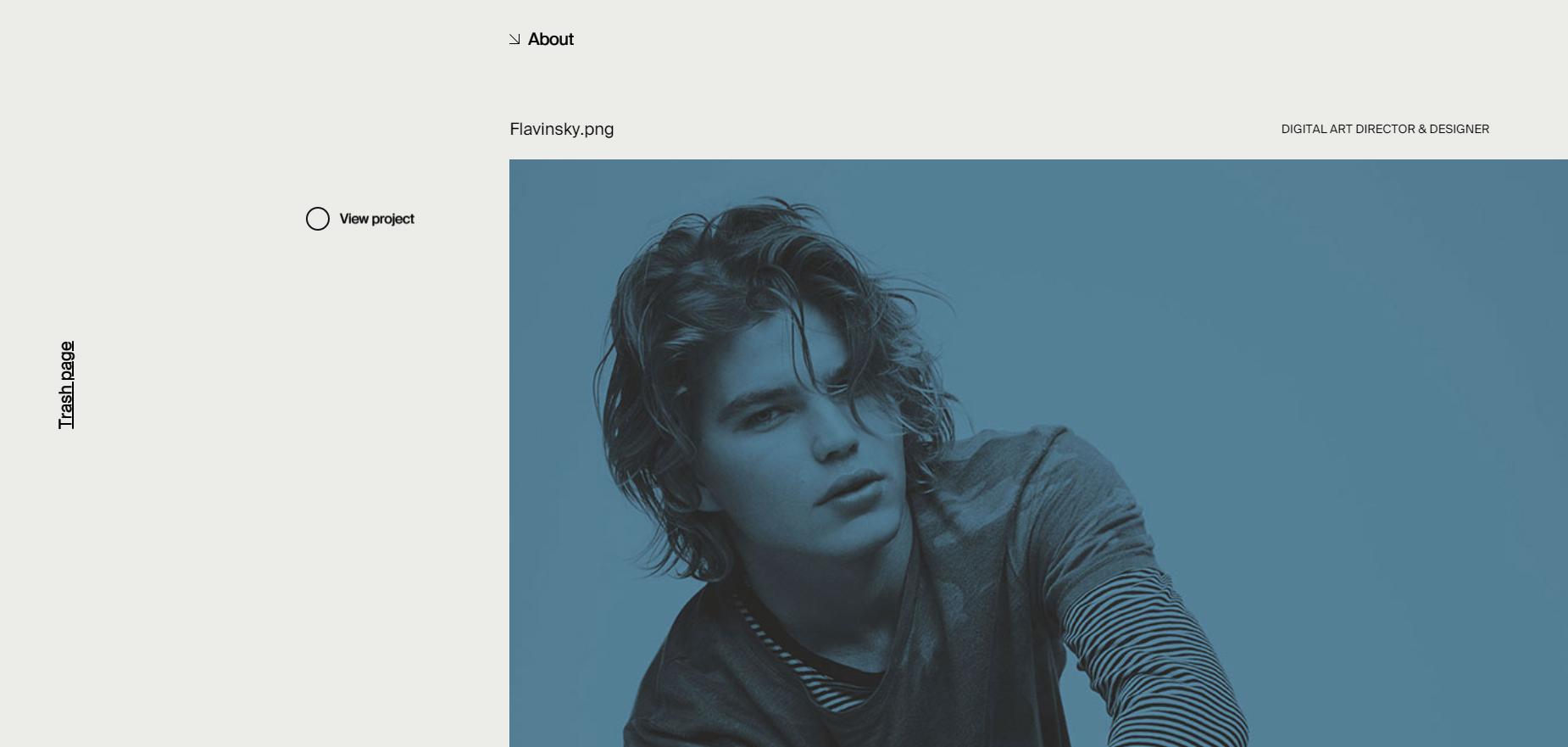 Flavinsky - Website of the Day