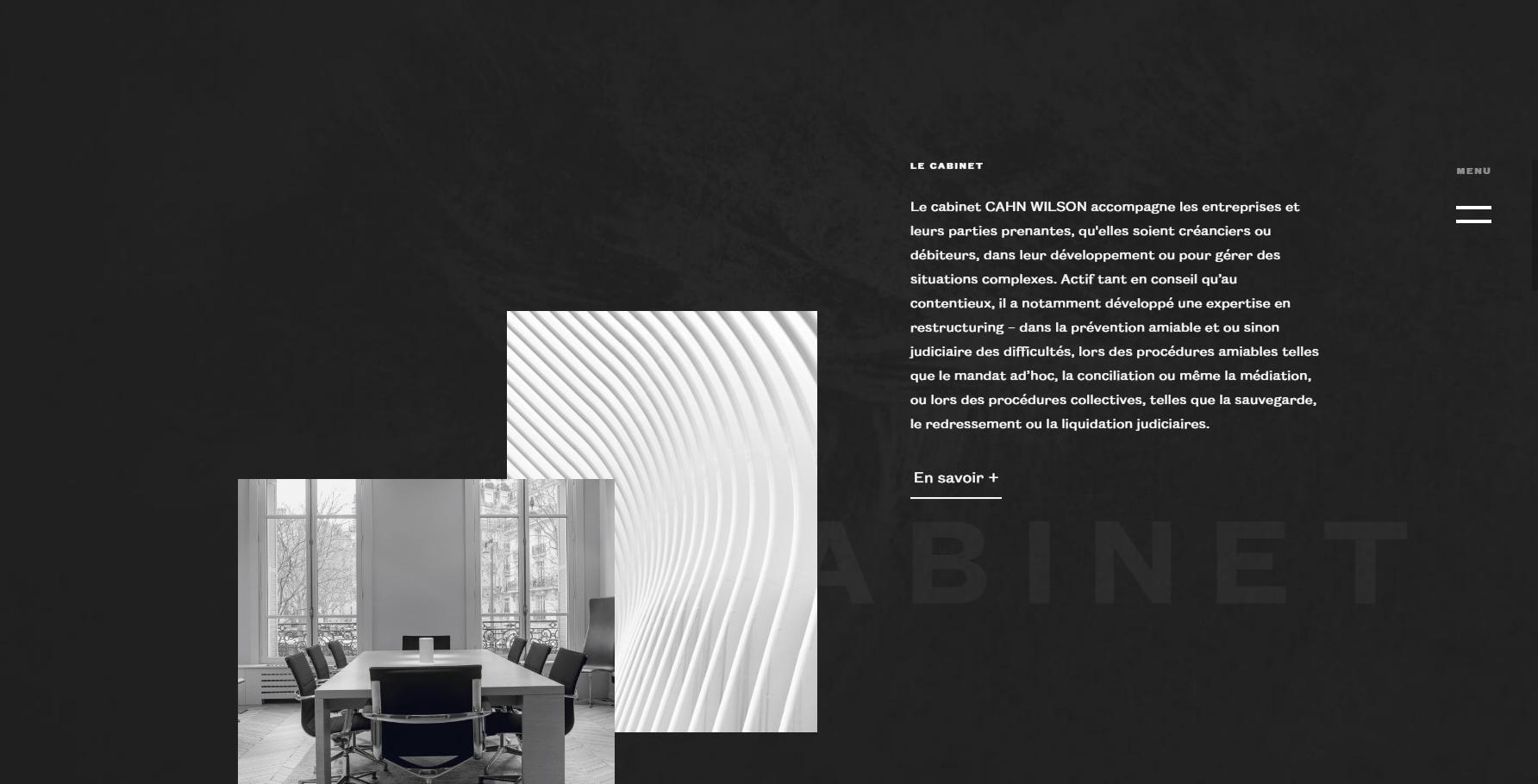 Cahn Wilson - Website of the Day