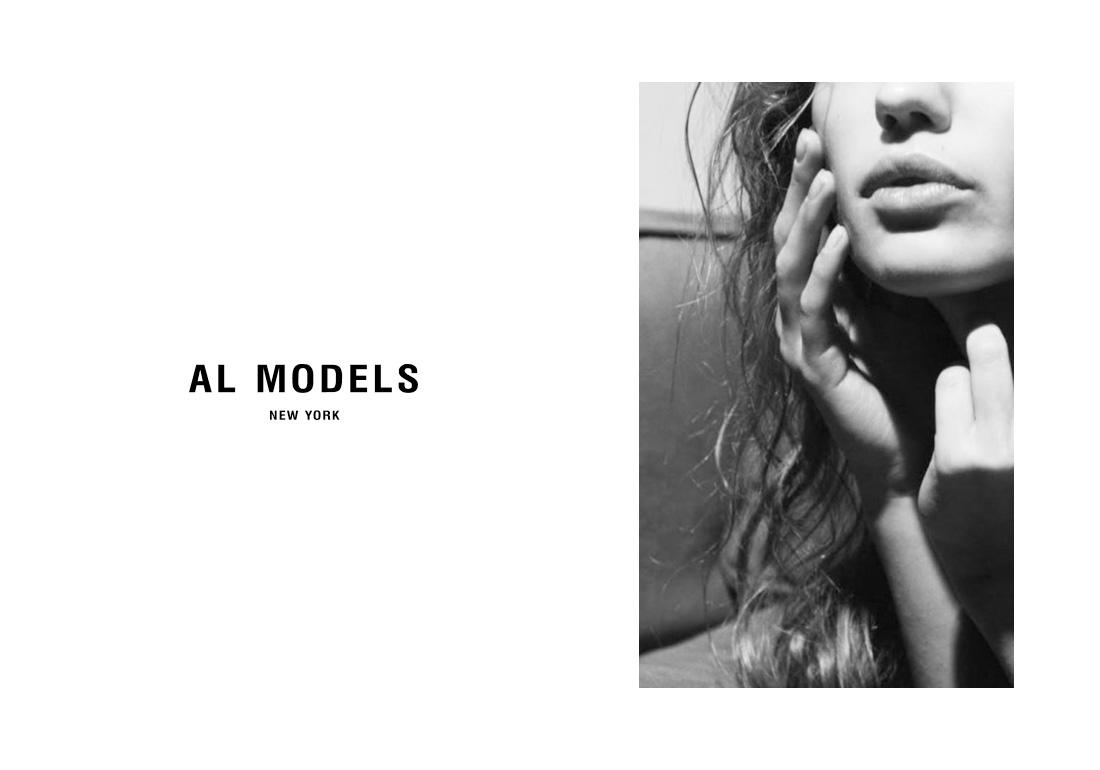 AL Models