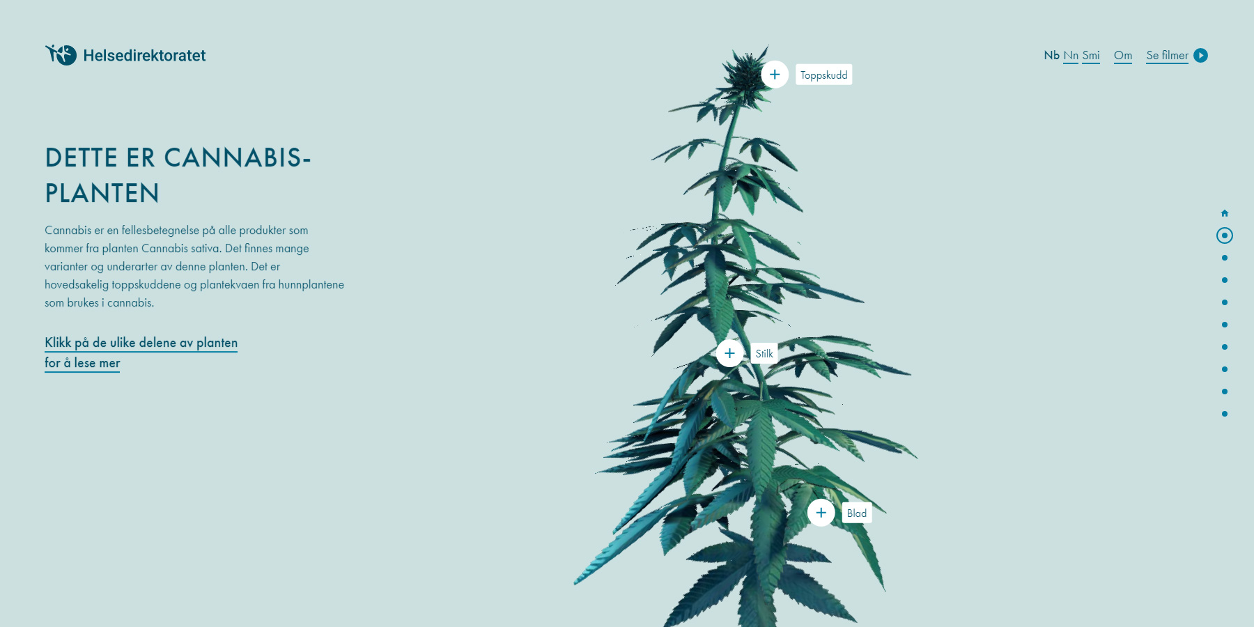 The Weed Center - Website of the Day